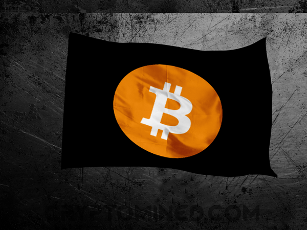 Bitcoin Logo Flag